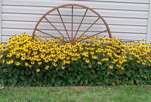 Flowers and landscaping ideas / by Rachel Anderson