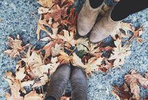 Autumn/Winter