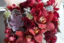 Burgundy and Marsala colours / Deep reds to create a luscious wedding look