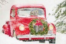 Winter / by Julie K
