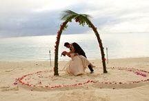 Beach Wedding /   / by Julie K