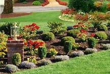 Landscaping Designs / Home-Owner-Buff a home sweet home for home news, home management, home and garden tips and many more insights about home tips. Read our blog at http://home-owner-buff.com/.