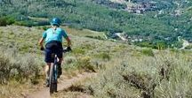 Mountain Bike Colorado Bike Tour / Single track, golden Aspens, beautiful vistas, great food, and micro-brews at the end of every ride. This is the Wilderness Voyageurs' idea of a great Mountain Biking Vacation! https://wilderness-voyageurs.com/adventures/mountain-bike-colorado-tour/