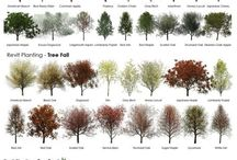 Landscape and design / by Kristie Ryf