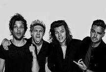 fans / One Direction Fans