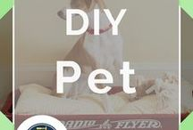 DIY Pet / The best DIY pet ideas, toys, projects, and accessories for your furry friends! DIY home remedies for eliminating pet odor, homemade shampoo ideas, and easy-to-make spray products. Pet treats can be expensive. Look no further for homemade pet recipes, costumes, and even ways to make a pet crate for your house. Block off your stairs to keep your stuff safe from pesky pets with our DIY plans for pet dividers by DIY Ready.