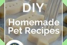 Homemade Pet Recipes / The best DIY homemade pet treats for all animals! Check out how to pack your pets diet with meat, potatoes, rice, and whole grains! Be good to your animals with these super food recipes. Start cooking right for your pet. Learn what kind of dog bone is right for your dog and why. Whether you have a kitty, horses, dogs, or bunnies - you'll learn how to keep them healthy and happy by making their meals memorable. Reduce allergies and expand their life expectancy by DIY Ready.