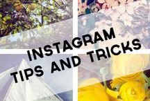 Instagram tips for bloggers / Tips for using Instagram, including growing followers, using hashtags and creating sharable images.