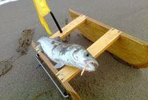Pesca con il barchino divergente