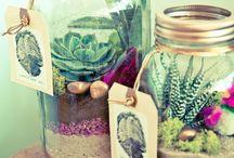 Diy w/ jars