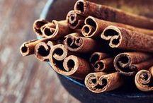 Cannelle de Ceylan / Originaire des régions tropicales, le cannelier peut atteindre jusqu'à 15 m de haut. Ses feuilles entières, opposées, persistantes, luisantes, et coriaces possèdent 3 nervures caractéristiques. C'est principalement l'écorce de cannelle, drogue et épice précieuse que l'on récolte avec grand soin, et qui, distillée donnera une huile essentielle très recherchée. (M.Faucon)