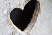 Herzen / Alles mit Herz