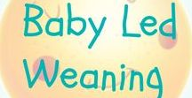 Baby Led Weaning / Baby Led Weaning recipes, tips and advice. Get easy, quick and cheap meal and snack ideas perfect for baby led weaning.