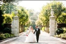 New York Weddings [real weddings]