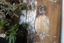 ##  schilderen hout  ##