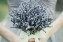 Lavender Gray Wedding