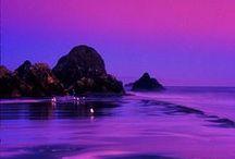 * ღ Precious Purple ღ * / #PreciousPurple
