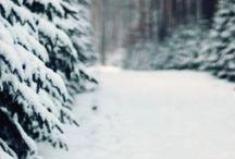 winter wonderland / let it snow
