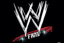 ♡ wwe fans ♡ / Basically wwe ♡