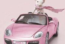 Think Pink! / by Oink, Oink, Mini Pigs!