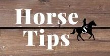 Horse Care Tips / DIY horse tips for around the barn. Plus easy horse care ideas that save you time & money. Follow me and check out savvyhorsewoman.com for more!