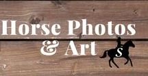 Horse Photography & Art / Beautiful horse photography and equestrian art. Follow me and check out savvyhorsewoman.com for more!