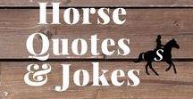 Horse Quotes, Jokes & Memes / Horse quotes, horse memes and funny equestrian jokes. Follow me and check out savvyhorsewoman.com for more!
