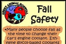 Fall Safety Tips / Fall Safety Tips