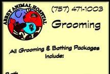 Grooming at Abbey Animal Hospital / Grooming at Abbey Animal Hospital
