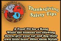 Thanksgiving Safety Tips / Thanksgiving Safety Tips