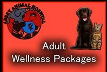 Wellness Plans For Your Pets / Abbey Animal Hospital Offers Wellness Plans For Your Pets