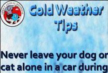 Cold Weather Safety Tips / Cold Weather Safety Tips