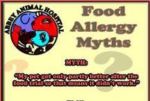 Food Allergy Myths / Food Allergy Myths