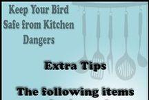 Top Ten Ways to Keep Your Bird Safe from Kitchen Dangers / Top Ten Ways to Keep Your Bird Safe from Kitchen Dangers