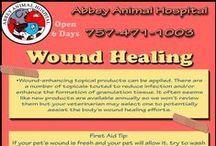 Wound Healing / Wound Healing