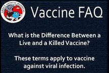What is the Difference Between a Live and a Killed Vaccine / What is the Difference Between a Live and a Killed Vaccine