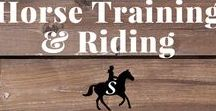 Horse Training & Riding Tips / Get the latest tips for riding and training your horse. Follow me and check out savvyhorsewoman.com for more!