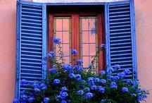 Shutters and Windows!!! / by Shelley Hayden-Bodnar