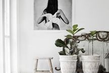 * Home inspirations *