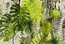 Tropical Patterns / Tropical patterns and designs