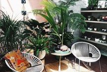 Tropical Accessories / Accessories you need in your life to add a touch of tropical to your home