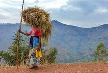 Kaffee & Ruanda / Geschichten rund um Kaffee aus Ruanda
