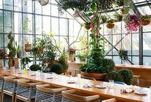 Tropical + Boho Commercial Spaces / THE places to spend your time & money in