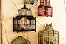 Decor   Bird Cages & Houses / Collection of birdcages