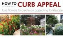 How to Increase Your Curb Appeal / Tips and tricks to add that extra bit of flair to your home! / by Waudena Millwork