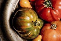 Tomate dans tous ses états!