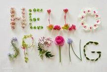 Springtime / //You can cut all the flowers but you cannot keep Spring from coming.// Rebirth. Color. Green. Pink. Fresh.