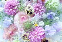 Flowers power ♡