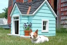 Dog House/ Dog Run / Incorporating creative dog houses and dog runs into your landscape