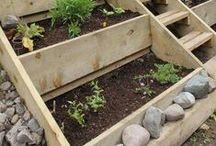 Garden Beds / Unique ideas to create a garden bed